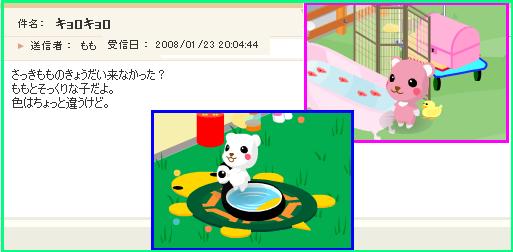 「キョロキョロ」080123-1.PNG